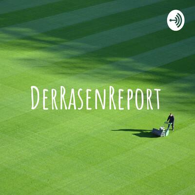 DerRasenReport