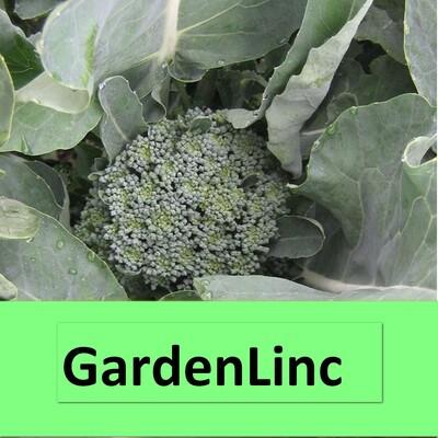 GardenLinc