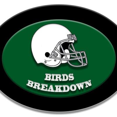 Birds Breakdown