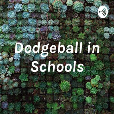 Dodgeball in Schools