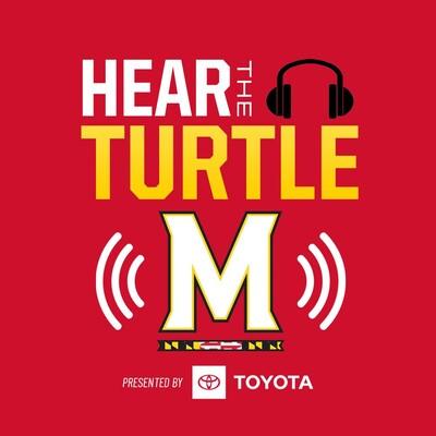 Hear The Turtle