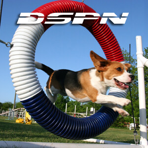 DSPN - The Dog Sports & Performance Network - Pets & Animals on Pet Life Radio (PetLifeRadio.com)