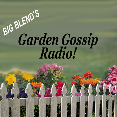 Garden Gossip Home & Garden