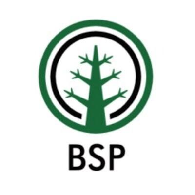 Branch Sports Podcast