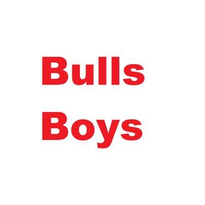 Bulls Boys
