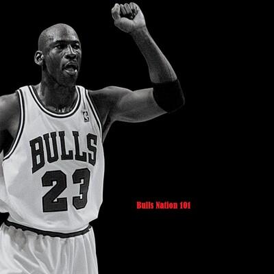 Bulls Nation 101