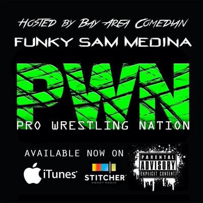 Pro Wrestling Nation
