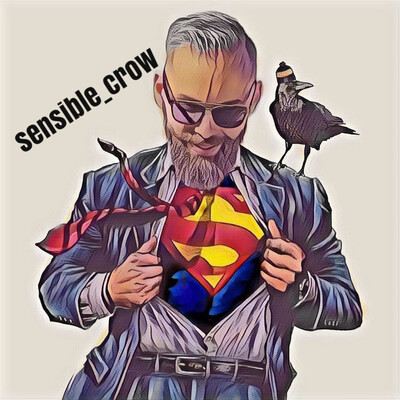 Sensible Crow
