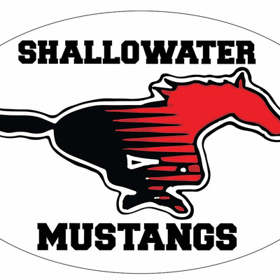 Shallowater Mustang Football