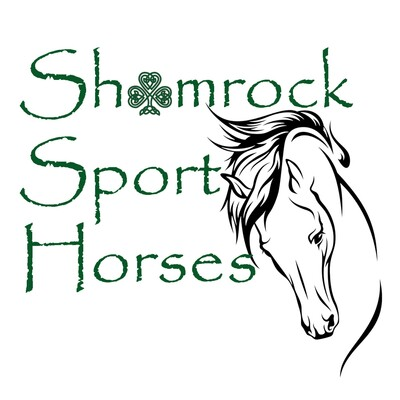 Shamrock Sport Horses