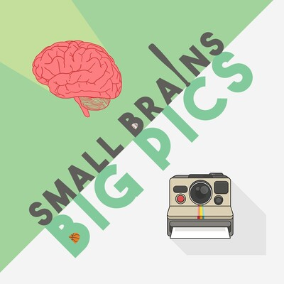 Small Brains Big Pics