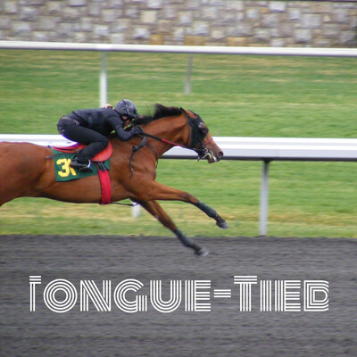 Tongue-Tied: The Horse Racing Podcast
