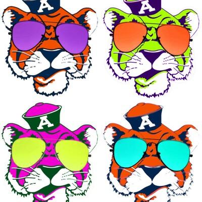 TrackEm Tigers Podcast