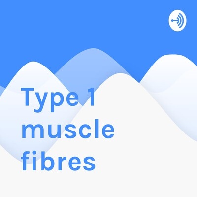 Type 1 muscle fibres