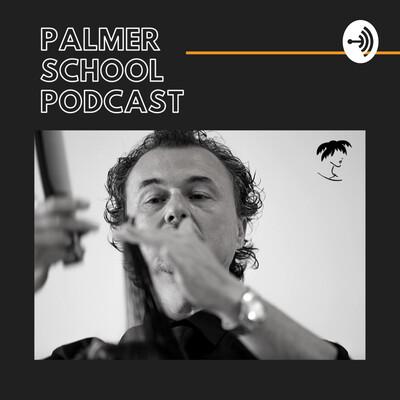 Palmer School Podcast