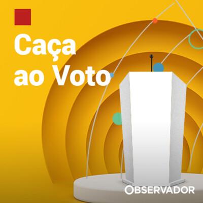 Caça ao Voto