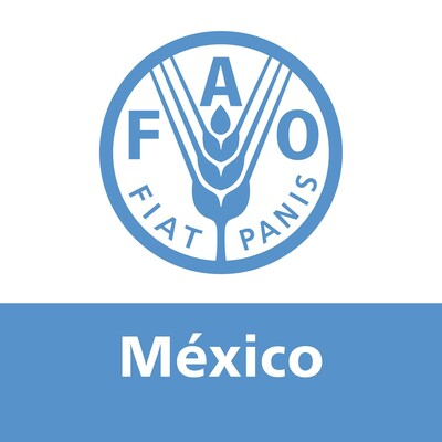 FAO en México