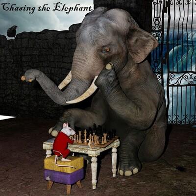 Chasing the Elephant