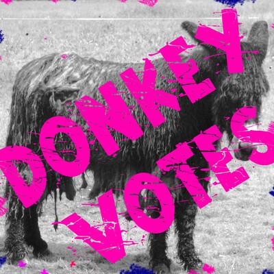 Donkey Votes