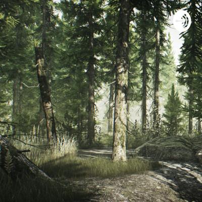 Away in the Woods