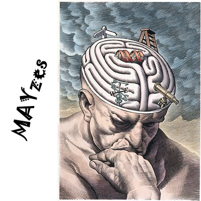 MAYzes - Political Rants
