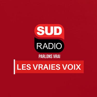 Les vraies voix - La suite