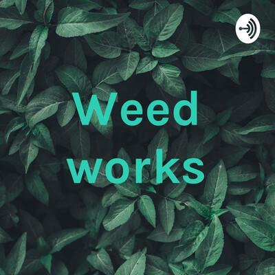 Weed works DIego, Alex, Irvin