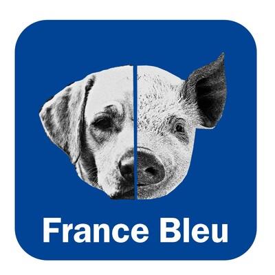 Meitat chen, meitat porc - France Bleu Périgord