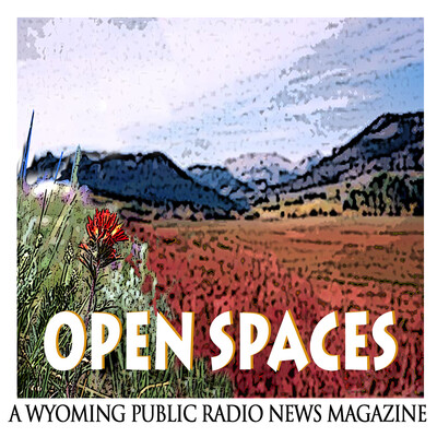 Open Spaces July 17, 2020