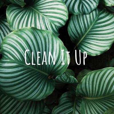 Clean It Up