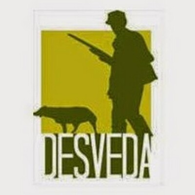 Podcast DESVEDA