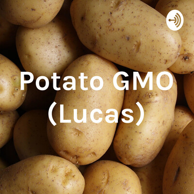 Potato GMO (Lucas)