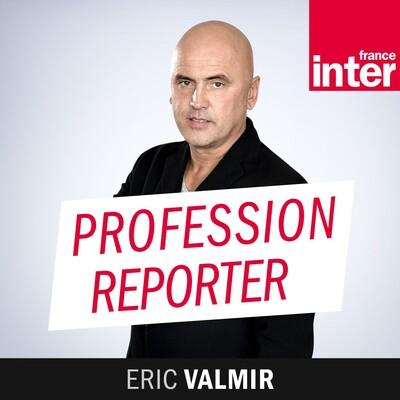 Profession reporter