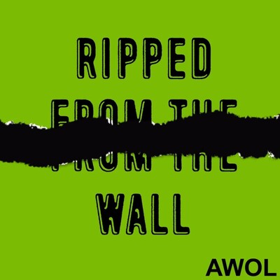 Ripped From The Wall