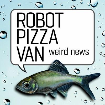 Robot Pizza Van, Funny News