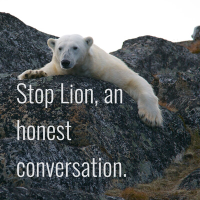 Stop Lion, an honest conversation.