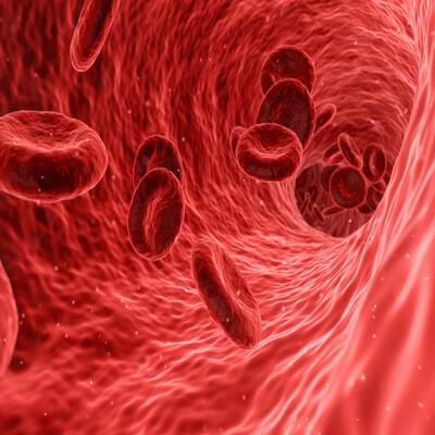 TSF - Vozes da Hemofilia - Podcast