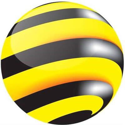 Bee Programming