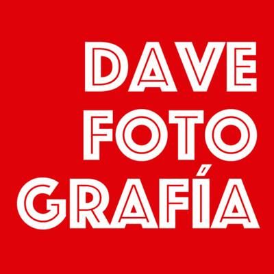Dave - Fotografía | Belleza