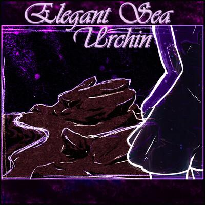 Elegant Sea Urchin