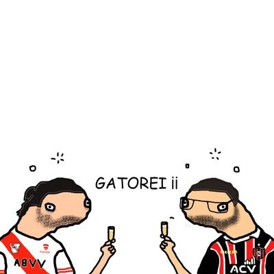 GATOREI