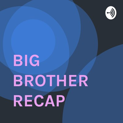 BIG BROTHER RECAP