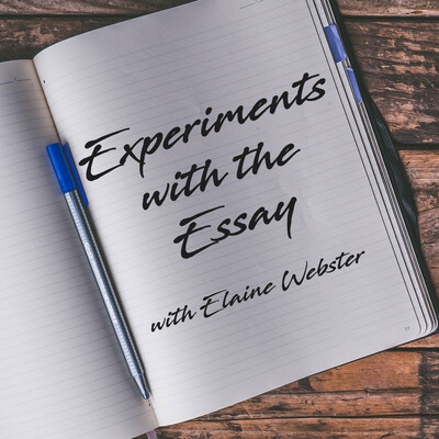 I Learn To Write By Writing and Experiments with the Essay