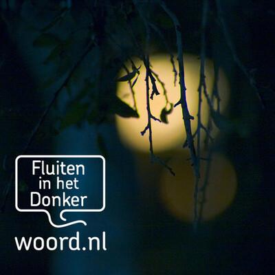 Fluiten in het donker