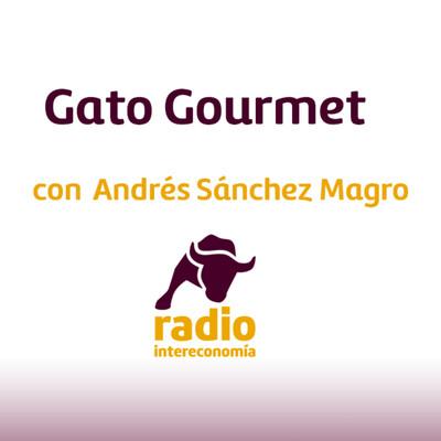 Gato Gourmet