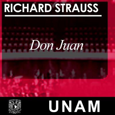 Don Juan, Op.20