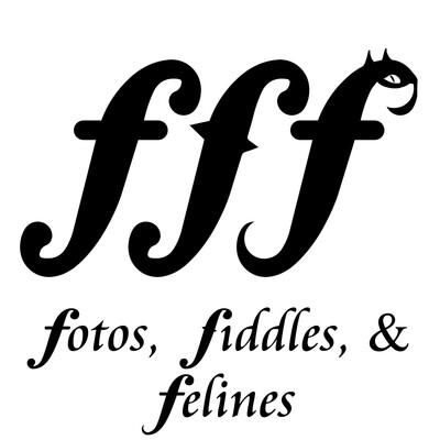 Fotos, Fiddles, & Felines