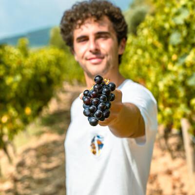 Italian Wines Podcast