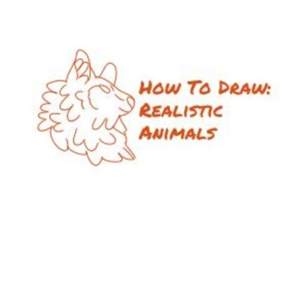 How To Draw: Realistic Animals