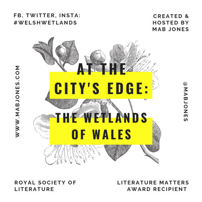 At the City's Edge: the Wetlands of Wales